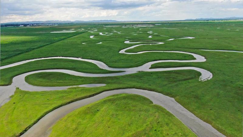 Graslandschaft in Saibei von Zhangjiakou