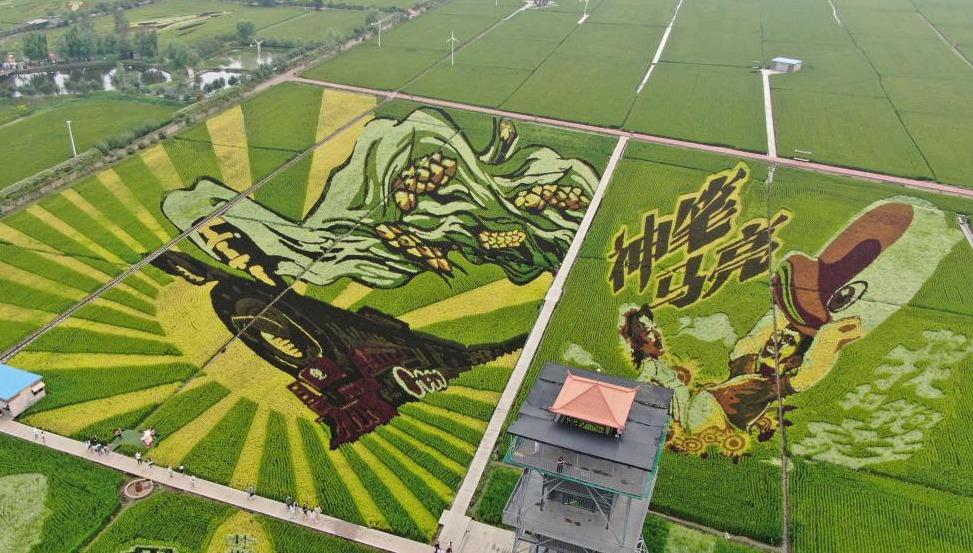 Reisfeldkunst in Shenyang zieht Besucher an