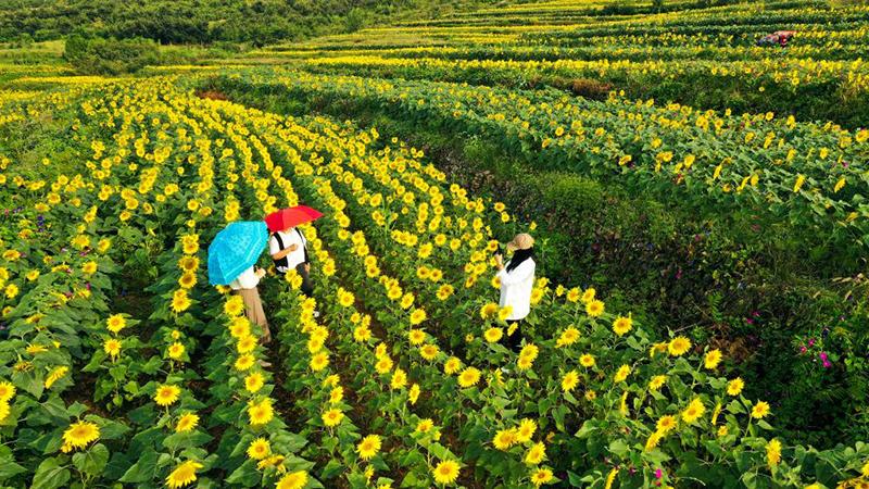 Herbstlandschaft in Zunhua der Provinz Hubei