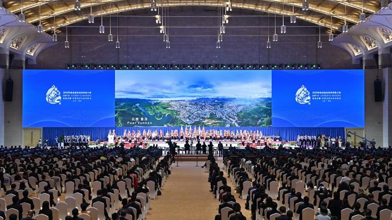 COP15 im chinesischen Kunming eröffnet